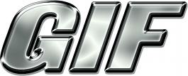 GEOINT Logo